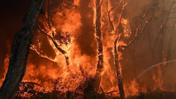 'Eşi görülmemiş sayıda yangın' çıktı!
