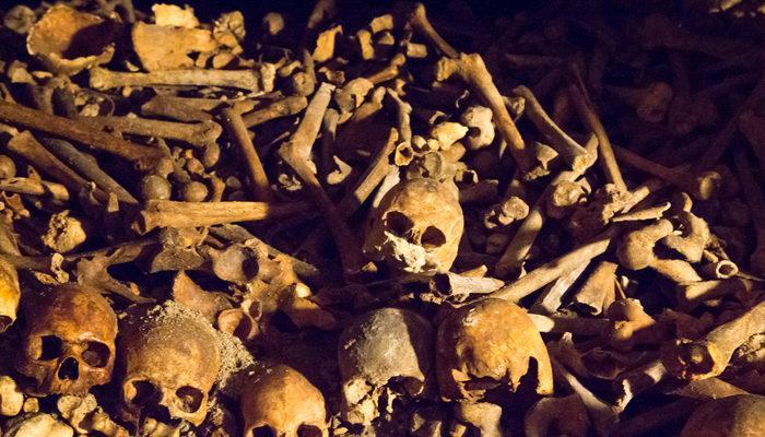 Meksika'da çöldeki bir çukurda 10 ceset bulundu