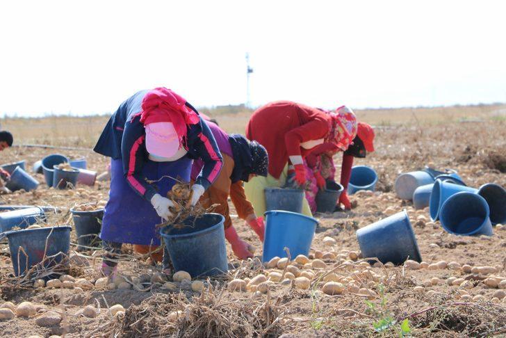 2021 Çiftçiye mazot ve gübre desteği ödeme tarihi: Çiftçiye gübre, mazot, tarımsal destek ödemesi ne zaman hangi tarihte verilecek?
