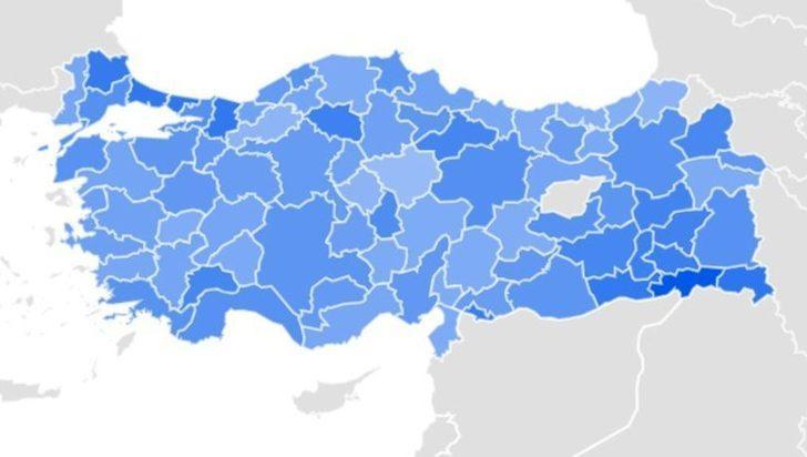 Türkiye, Google'da siyanürü arıyor! Aramalardaki sorular endişelendirdi