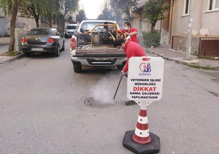 Bayrampaşa'da sivrisinekle dört mevsim mücadele