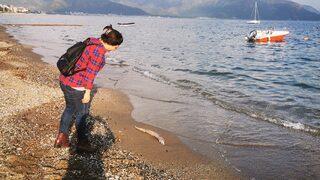 Sahile vuran balık vatandaşları şaşırttı