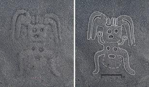 Dev çizimler şaşkınlık yarattı! Bunları kim, nasıl çizdi?