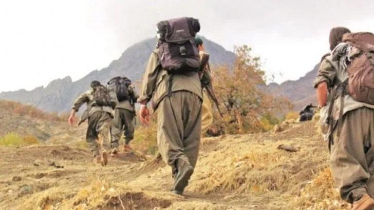 MSB duyurdu: 2 terörist daha teslim oldu