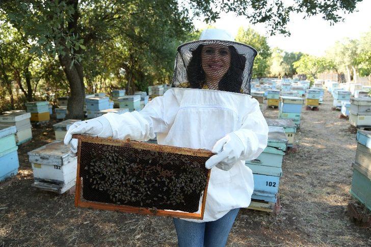 Çocukların gelişiminde arı sütünün  etkisi