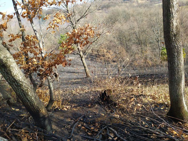 İnegöl'de orman yangını (2)