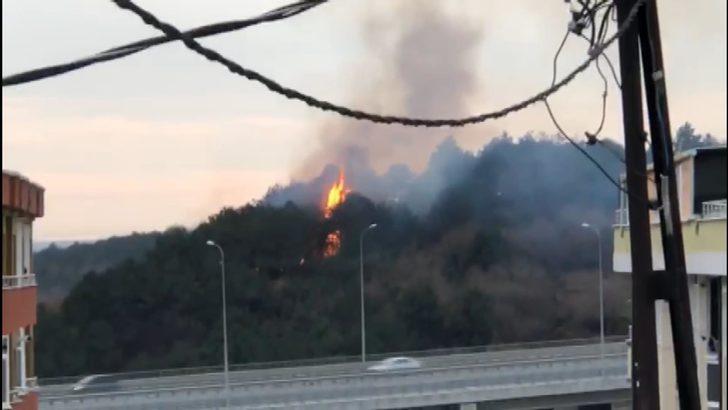 Arnavutköy'de orman yangını (1)