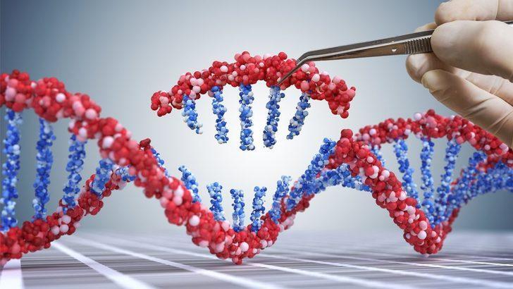 Gen değiştirmeden felç tedavisine: 2019'da sağlık alanında yaşanan en önemli gelişmeler