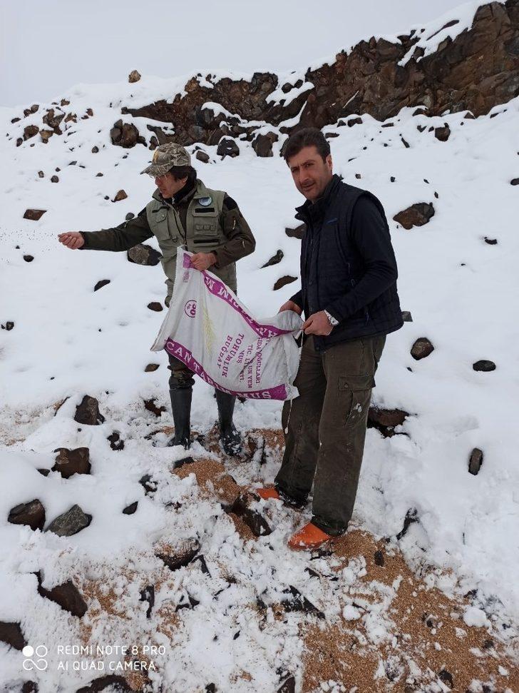 Muş DKMP tarafından yaban hayvanları için doğaya yem bırakıldı