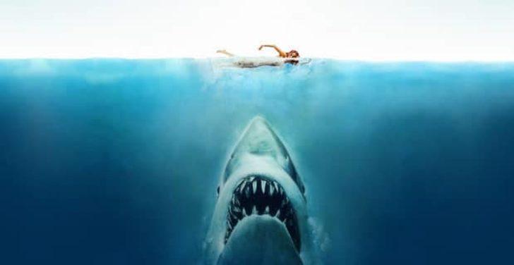 En iyi köpek balığı filmleri