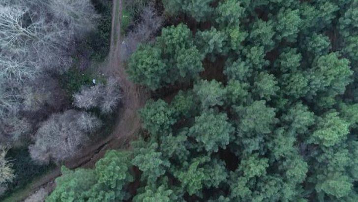 İş adamının cesedi ormanda gömülü olarak bulunmuştu! '15 milyon dolar' detayı
