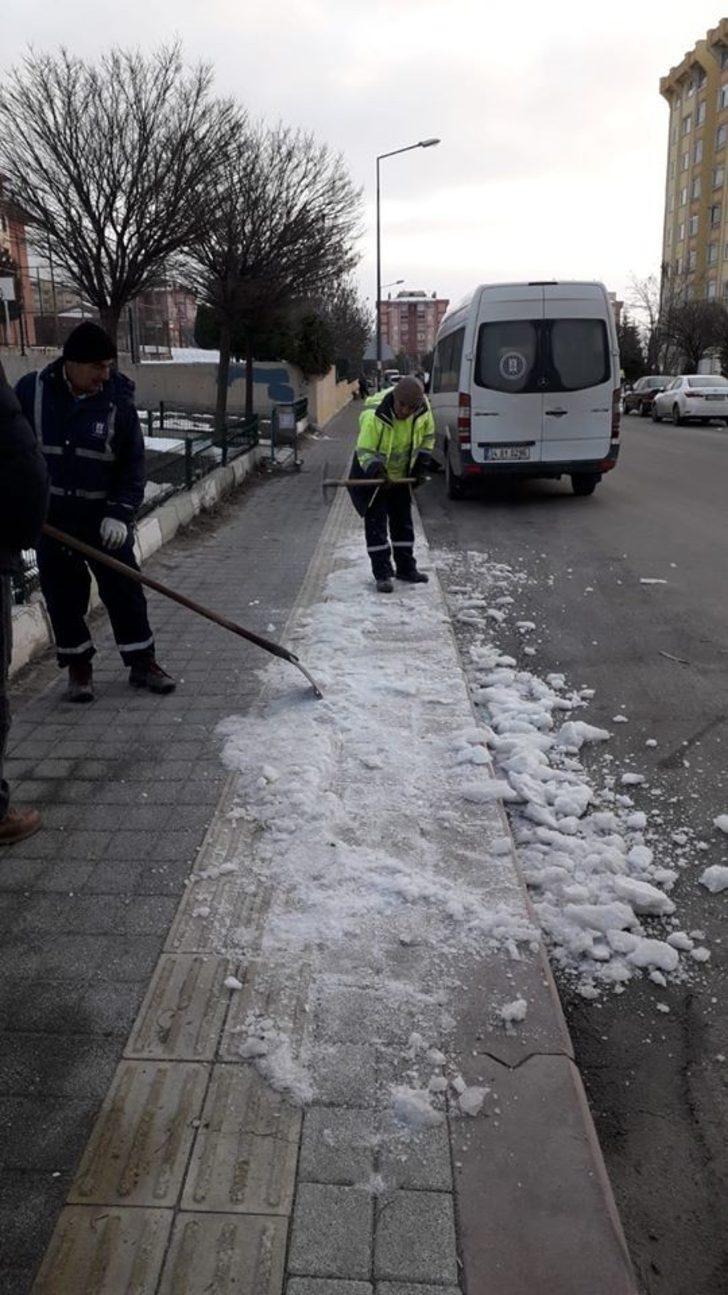 Budama ve kar temizliği çalışmaları