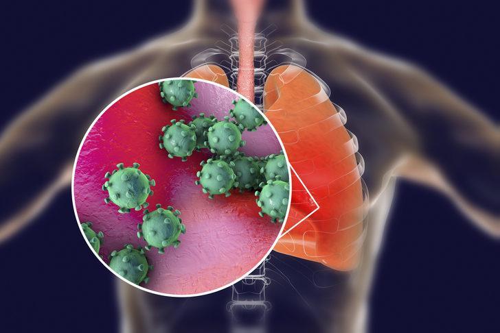 Koronavirüs nedir? Koronavirüs belirtileri ve korunma yolları