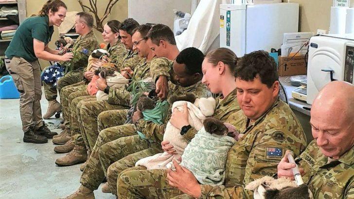 Askerler yangın mağduru koalaları eliyle besledi!