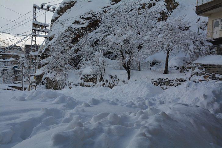 Hakkari'de 107 yerleşim yerinin yolu kapandı
