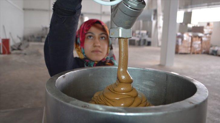 Milli çikolata olarak adlandırılan 'Haşhaşella'ihraç edilecek
