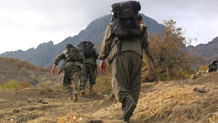 İçişleri Bakanlığı duyurdu: Bir terörist daha teslim oldu