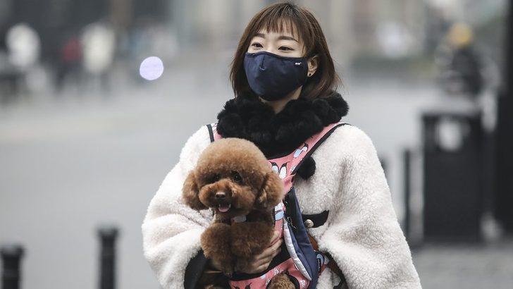 Koronavirüs: Maske takmak virüsten korur mu?