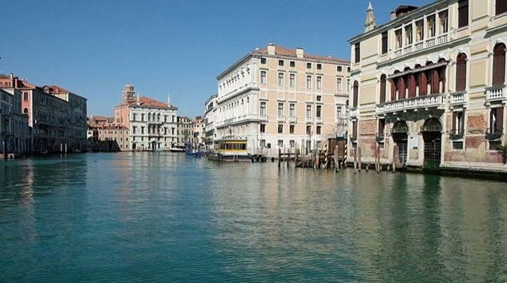 Koronavirüs Venedik kanallarını temizledi: Balıklar ve kuğular geri döndü