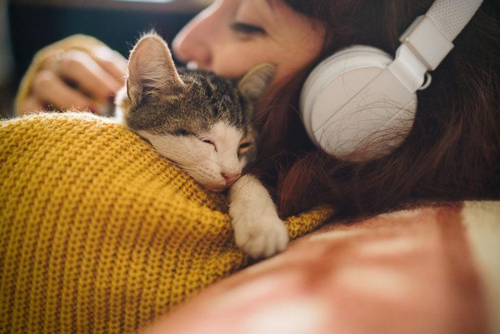 Araştırma: Kediler koronavirüsten enfekte olabiliyor