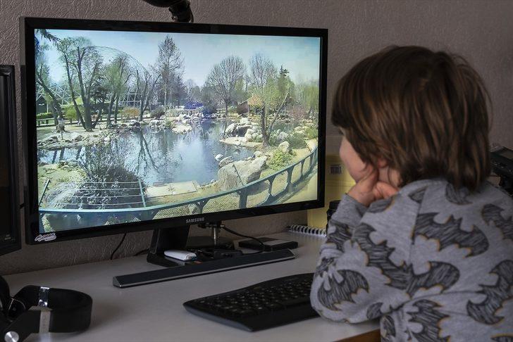 Ziyarete kapatılan Bursa Hayvanat Bahçesi internetten gezilebilecek