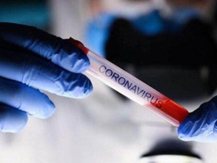 Yeni koronavirüs (COVID-19) hakkında bilmeniz gerekenler
