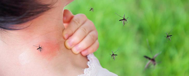 İşte çocukları tehdit eden 3 yaz alerjisi