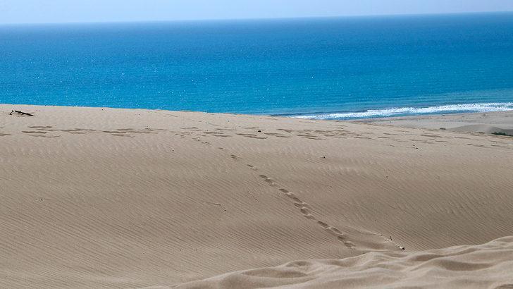 Patara ve Çıralı, Avrupa'nın en iyi 30 plajı arasında gösterildi