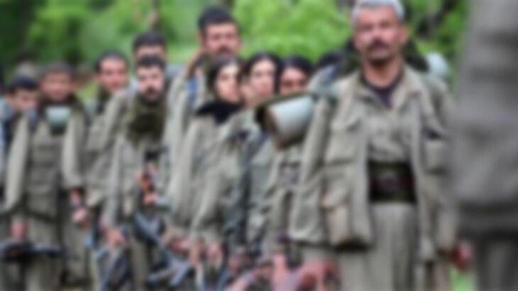 İçişleri Bakanlığı duyurdu: Mardin'de bir terörist teslim oldu