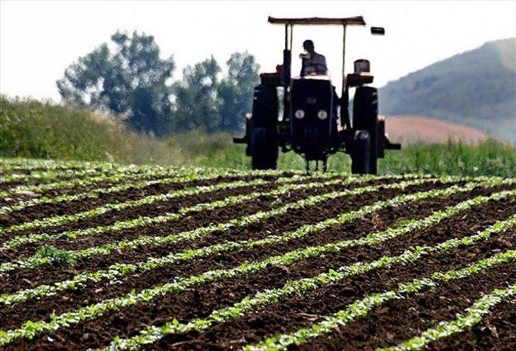 Çiftçilere destek ödemeleri ne zaman yapılacak? Hububat, pamuk ve gübre destek ödemelerinde tarih belli oldu