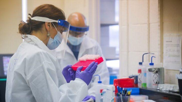 Roche'nin Kan Testi İngiltere'de Onaylandı