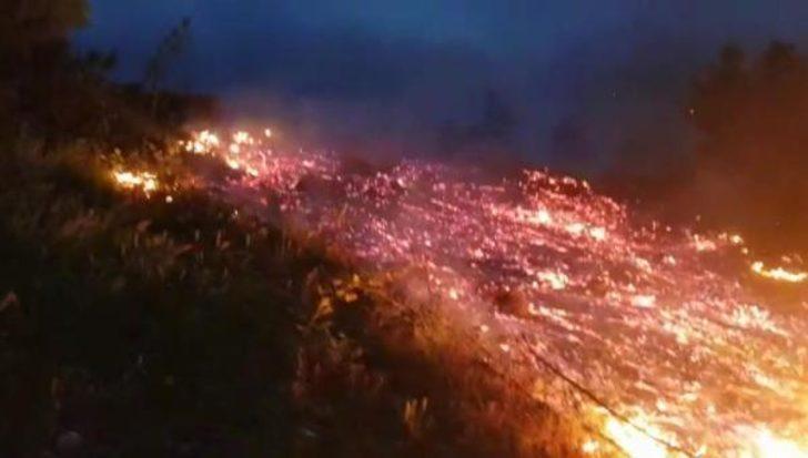 Bursa'nın İnegöl ilçesinde orman yangını