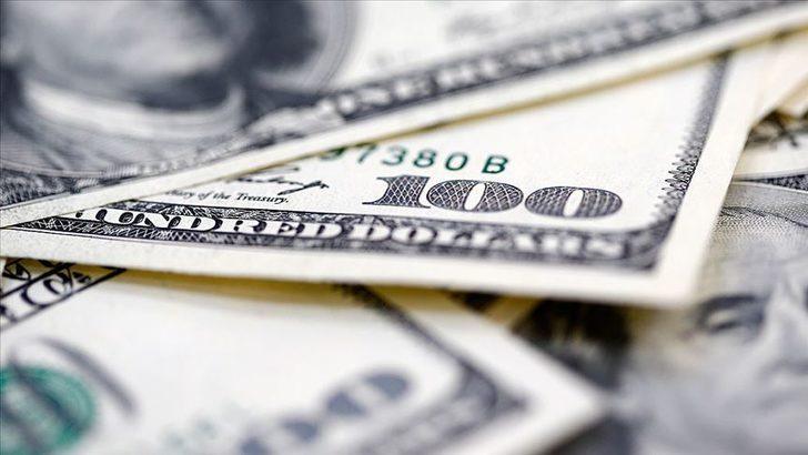 ABD'de bir aile yol ortasında 1 milyon dolar buldu