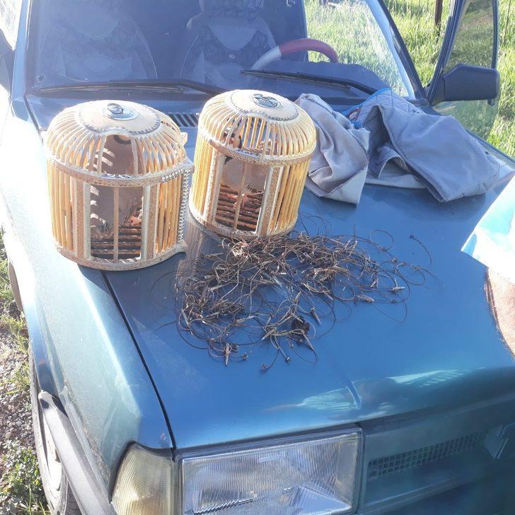 Kaçak keklik avı yapan 6 kişiye 10 bin TL ceza