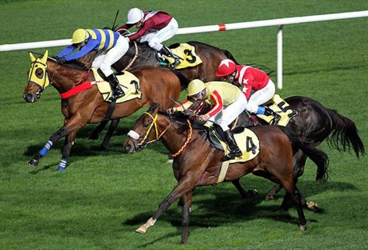 Katar'a şampiyon yarış atlarının spermleri mi satıldı? Gündem yaratan iddia