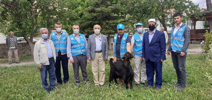 Osmancık'ta şükür kurbanı kesildi