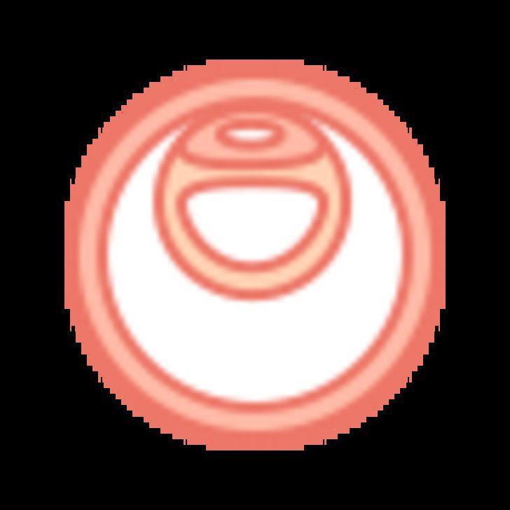 Hamilelikte 12. Hafta : 12 Haftalık Gebelik Gelişimi