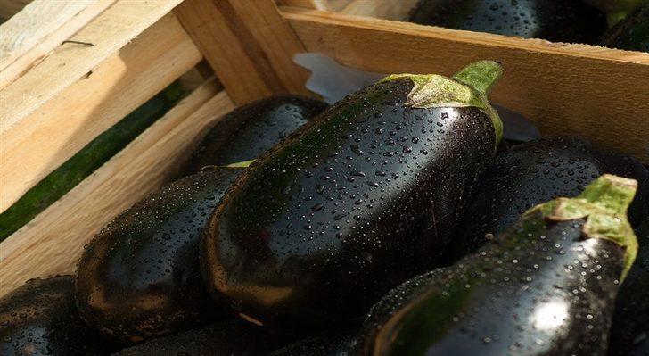 Patlıcan : Faydaları Nelerdir?