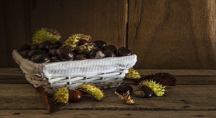 At kestanesi çayı: Faydaları nelerdir, nasıl hazırlanır?