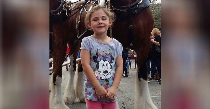 Küçük Kızın At İle Çekilen Fotoğrafı Kahkahalara Boğdu