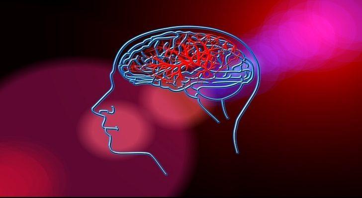 Beyin, Hafıza Gelişimine Ne İyi Gelir?