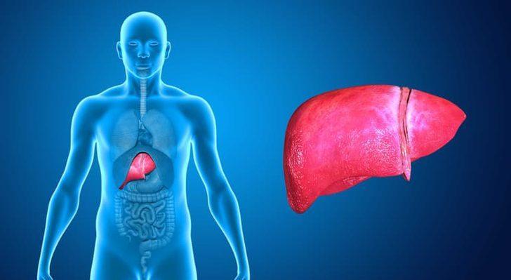 Karaciğer Büyümesi (Hepatomegali) Tedavisi, Neden Olur? Belirtileri Nelerdir?