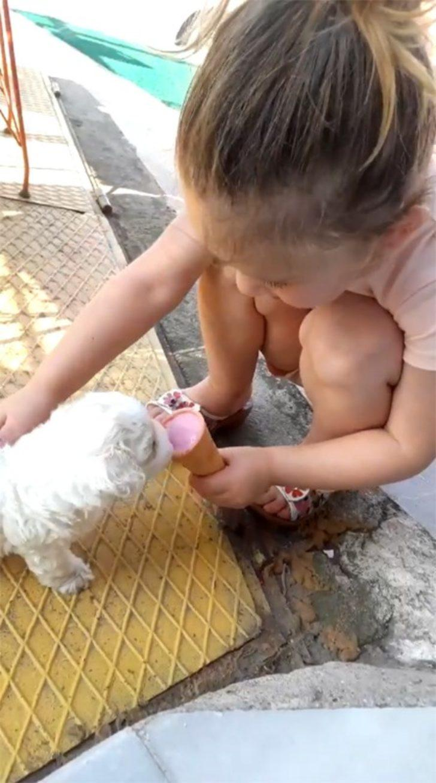 Bu köpek dondurma yiyor