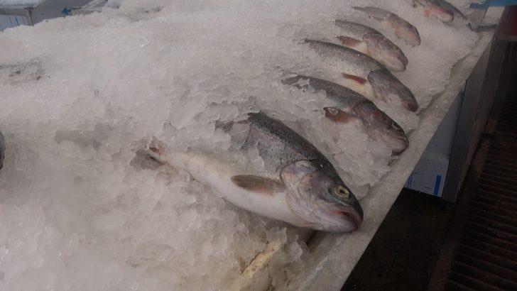 Balık satışlarına 'koronavirüs' etkisi! Yüzde 30 arttı