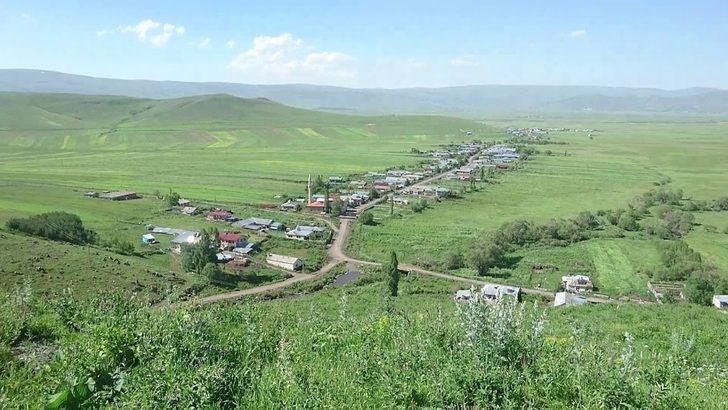 Ardahan'da bir köyde uygulanan karantina kaldırıldı