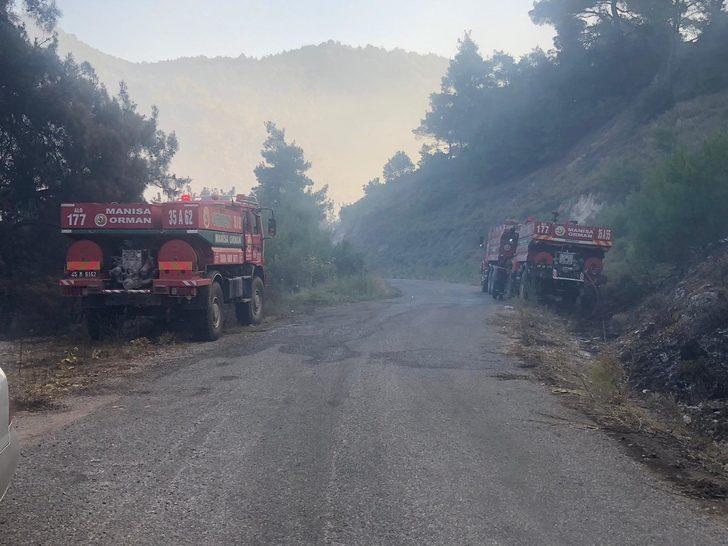 Manisa'daki orman yangınında son durum!