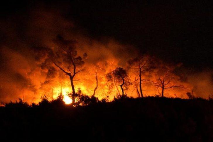 Bakan Pakdemirli duyurdu: Manisa ve Aydın'daki yangınlar kontrol altına alındı