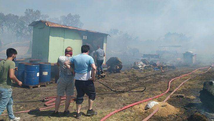 Bursa'da çiftlikte çıkan yangın ormana sıçradı! 20 küçükbaş hayvan telef oldu