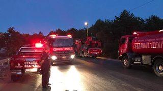 İstanbul Ataşehir'de orman yangını!