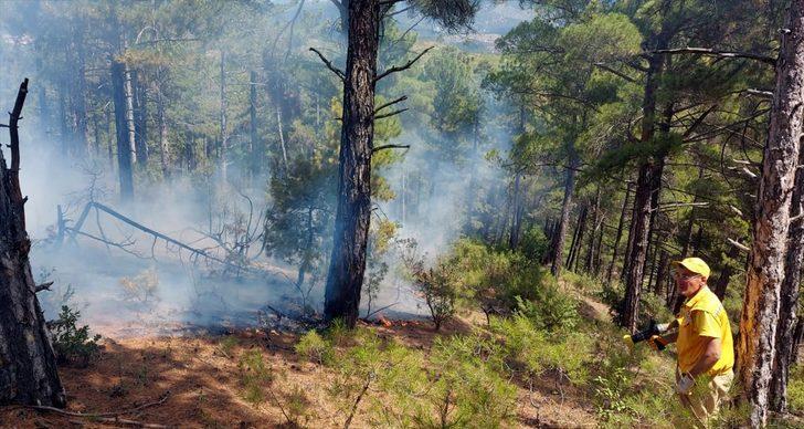 Kütahya'daki orman yangınlarının yıldırım düşmesinden çıktığı belirlendi
